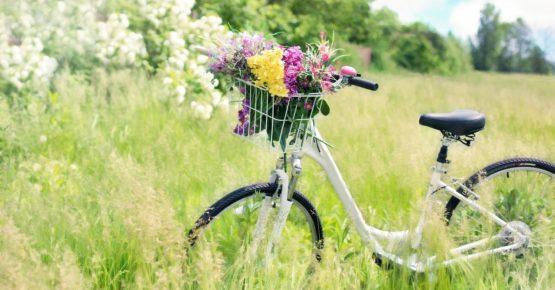 affittacamere Villaportosulmagra - bici